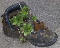 sneaker planter Recycled Crafts